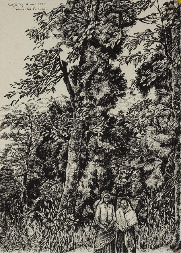 Ragazze di Darjeeling, Ink, 26×36 cm